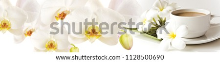 White flowers orchids and a cup of tea. Panorama for glass panels. High quality image for skinali. Panoramic view #1128500690