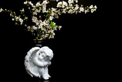 white flowers . spring plum blossom on black background and white angel