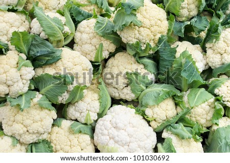 White fresh cauliflower on display at the farmers market