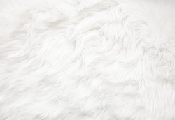 White fur texture close up, useful as background