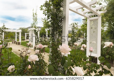 White garden #635829017