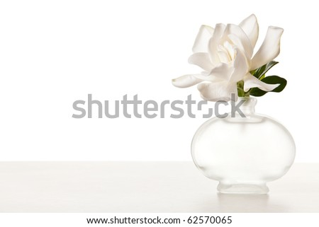 White Gardenia Blossom on Marble Table