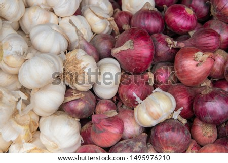 White garlic and red onion photo texture. Spicy cooking ingredient. Pile of white garlic and red onion. Onion bulb in peel. Whole garlic bulb. Healthy food against flu. Cook recipe or cookbook banner
