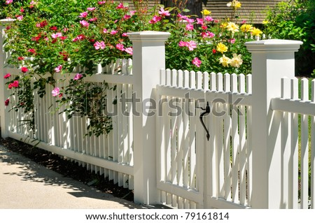 White Gate with Yellow, Pink and Red Roses