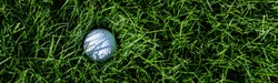 White golf ball embedded in the tall grass of a golf course rough