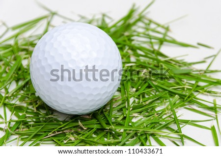 white golf ball on fresh small leaf grass in white background