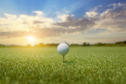 White golf ball on golf pin green grass near hole with golf course background , green tree sun rays.
