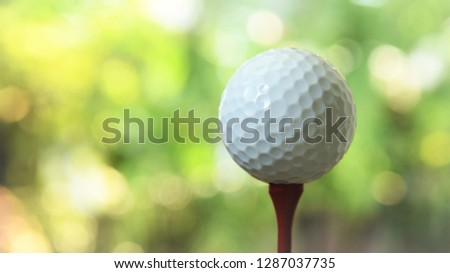 white golf ball on red tee green bokeh background