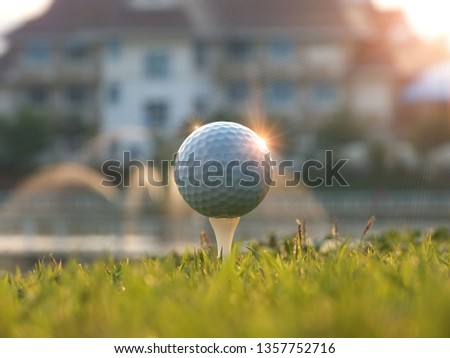 White golf on the tee In the green lawn