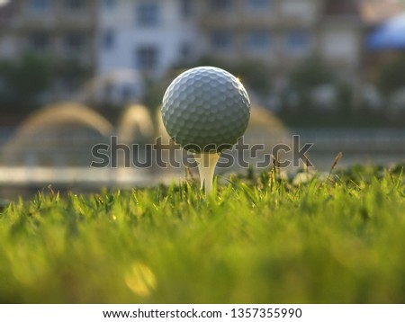 White golf on the tee In the green lawn behind the University of Asia, Thailand