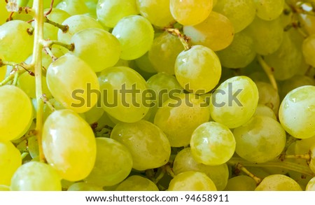 white grapes #94658911