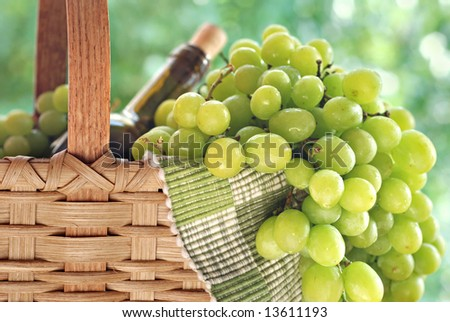 White grapes cascading from a basket with bottle of wine.  Background is sunlit summer foliage in soft focus.  Close-up with shallow dof.