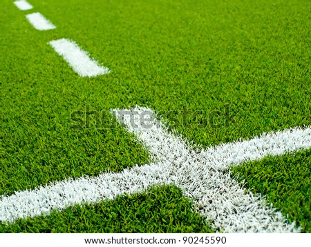 White grass lines on a soccer (football) field.