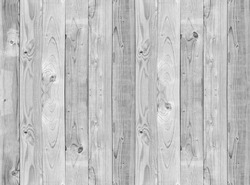 white, grey wood texture. background old panels
