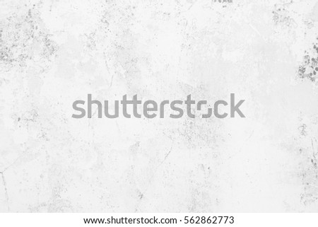 White Grunge Cement Wall Background. #562862773