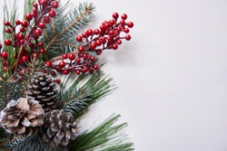 White holiday background with pinecones and holly