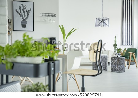 White home interior with herb stand, wooden chair and table