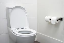 white home toilet closeup