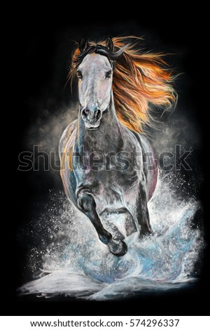 White horse with long mane run gallop in snow isolated on dark background. Pastel drawing