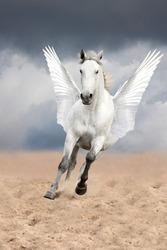White horse with wings running free (pegasus)
