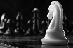 white knight chess piece on the board background