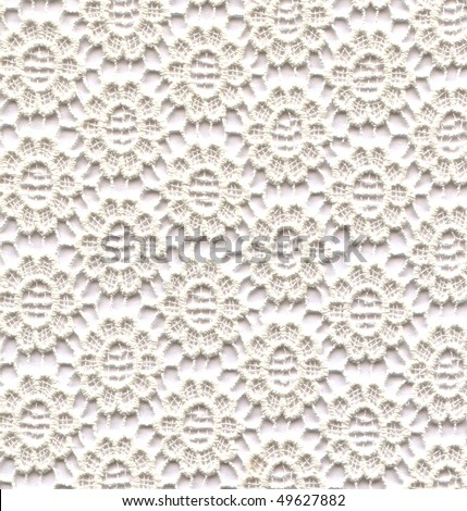 White lace flowers - stock photo