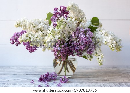 White lilac and purple lilac in glass vase on wooden table. Spring branches of blooming lilac festive bouquet of flowers. Stock photo ©
