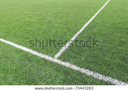 White line on a soccer field grass