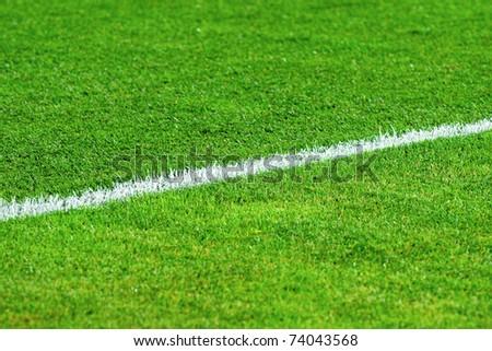 White line on a soccer field grass