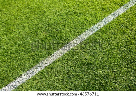 White line on the grass of sporting stadium