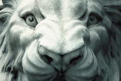 White lion sculpture. Toned. Head, close-up