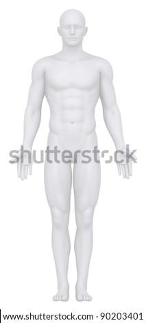 White male isolated in anatomical position