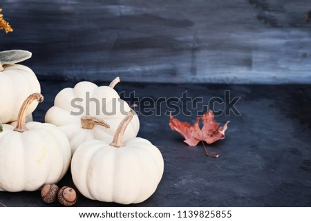 White mini pumpkins and acorns sitting on dark rustic table with free space for copy text. Halloween or Thanksgiving Day background.