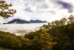 White misty clouds on Golden Hill in the morning, Golden Stream Valley of Dalat City, Famous Attractions in Dalat City Dalat is the foggy plateau city in the morning. Dalat is one of the famous touris