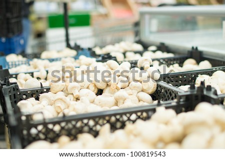White mushrooms in boxes in supermarket