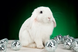 White new year rabbit with christmas-tree decorations on green background