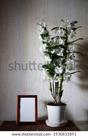 White Nobile Dendrobium orchid and picture frame on the table in the room Сток-фото ©