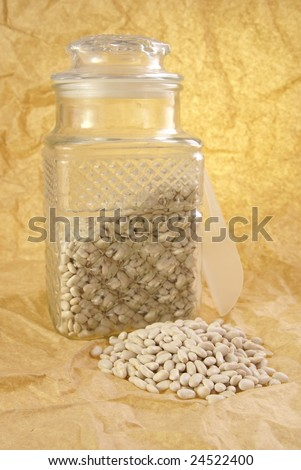 White Northern Beans still life with glass canister, small scoop, and small pile of beans in the front.