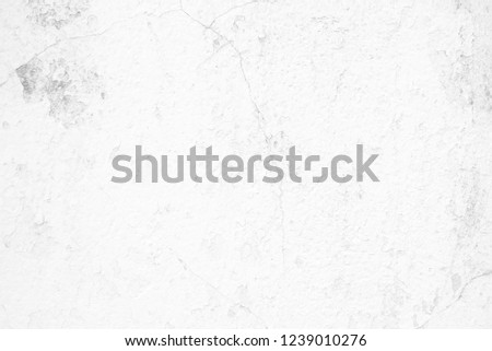 White Old Concrete Wall Background. #1239010276