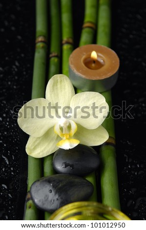 white orchid and bamboo grove ,zen stone ,candle,on wet black background