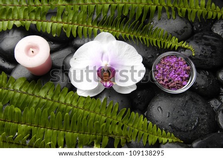 White orchid with fern and candle on pebbles background