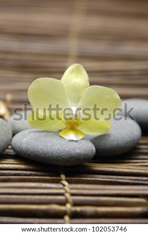 White orchid with stones on bamboo stick straw mat