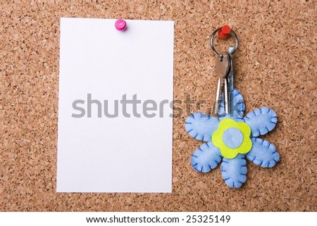 White page and home keys stuck to a cork noticeboard