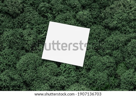 White Paper Copy Space on Green Moss Background, Office mock up, remote job. Wild nature, ecology concept. Sustainable, organic, zero waste lifestyle. 商業照片 ©