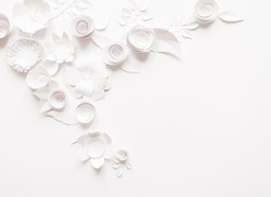 White paper flowers on white background. Cut from paper.
