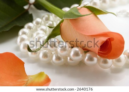 white pearl necklace and rose over white background - stock photo