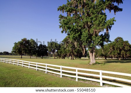 White Picket Fence on a Horse Farm