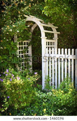White picket fence with arch in a garden.