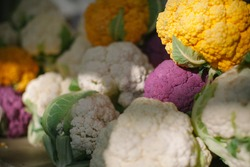 White, pink and yellow cauliflower with sun beams on it.