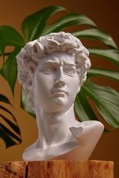White plaster bust sculpture portrait of a young man. White plaster bust sculpture portrait of a young man. Gypsum statue of David's head. Michelangelo's David statue plaster copy.